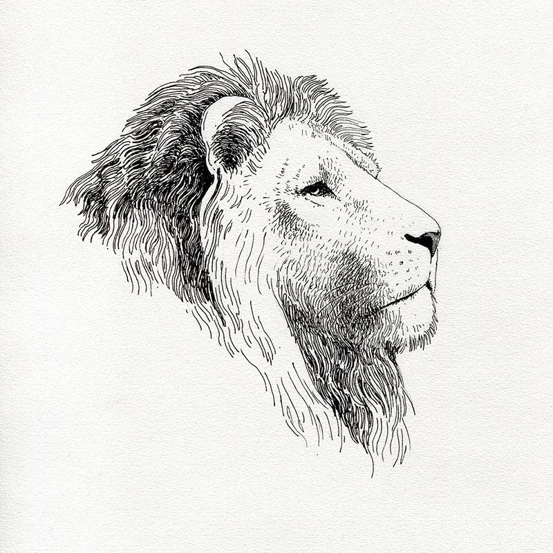 leon-tinta-grande-web_1200 A