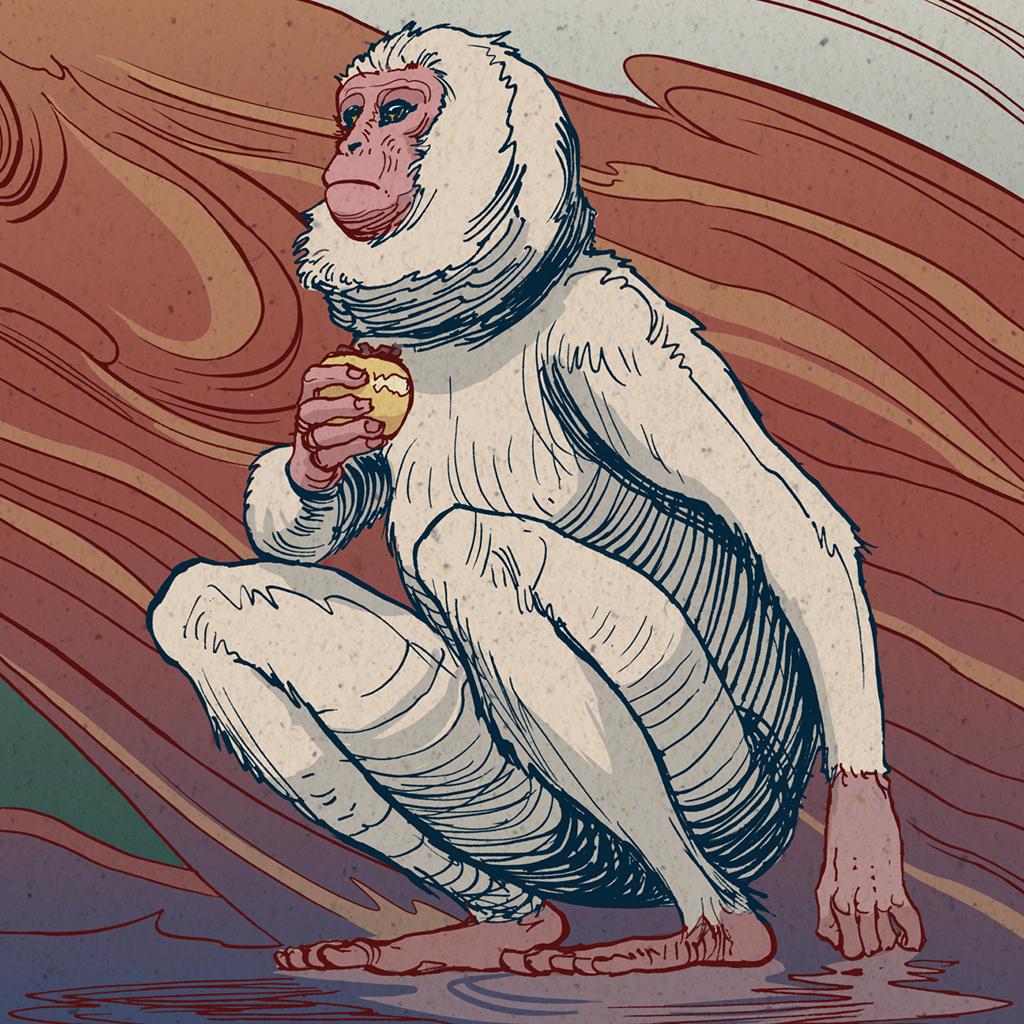 monkey det nicolas castell ig